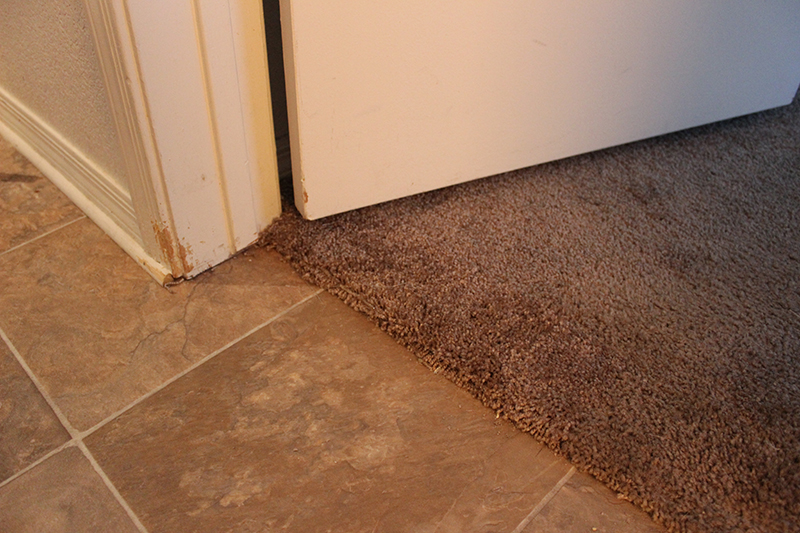 Carpet Repair Cleaning Calgary Don